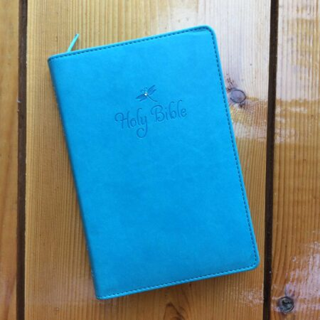 NIV Firefly Compact Reference Bible