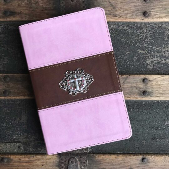 HCSB Pink & Brown Bible