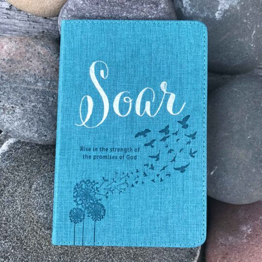 Soar Promise Book - God's Promises Book