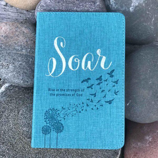 Soar Promise Book - God's Promises Book