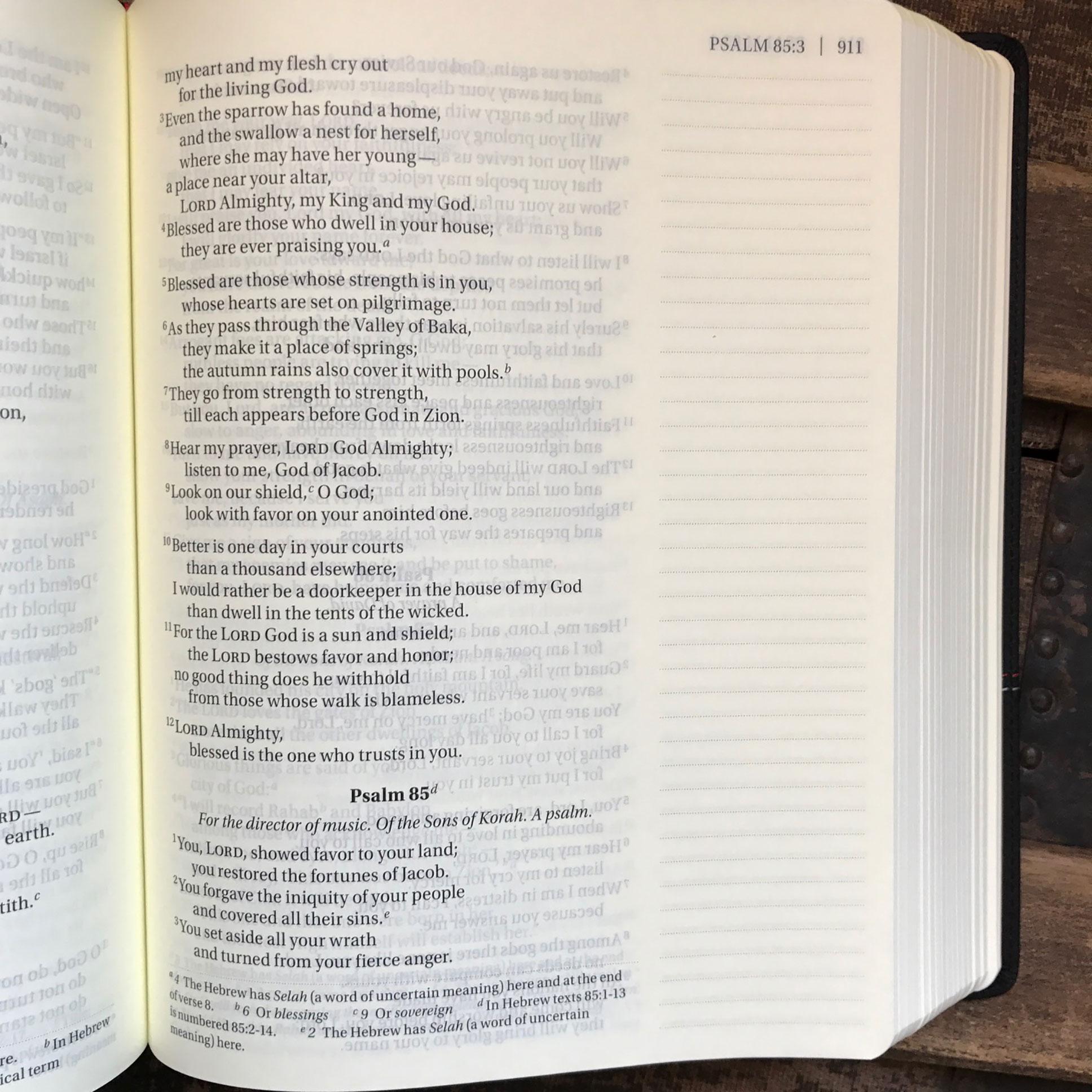 niv journal the word large print bible