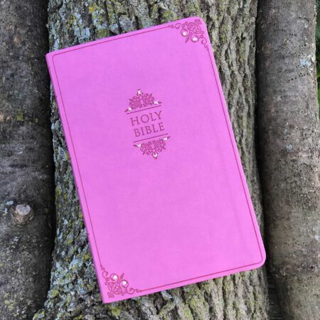 NIV Thinline Bible, Orchid