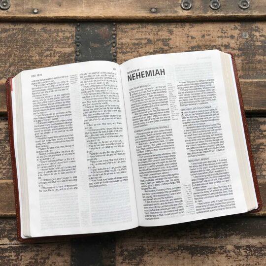 KJV Large Print Ultrathin Reference Bible, British Tan LeatherTouch, Black Letter Edition