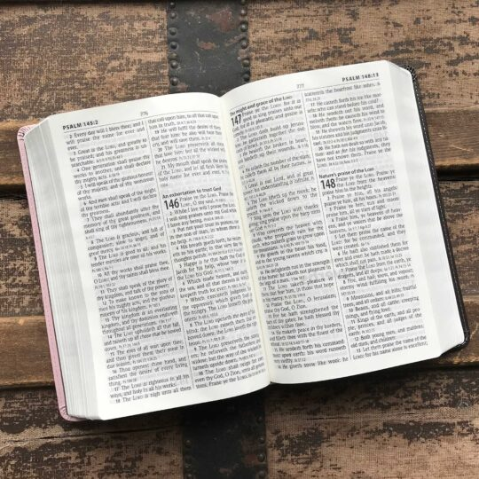 KJV Personal Size Giant Print Reference Bible, Imitation Leather in Pink/Chocolate