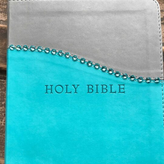 KJV Personal Size Giant Print Reference Bible, Imitation Leather in Turquoise/Gray