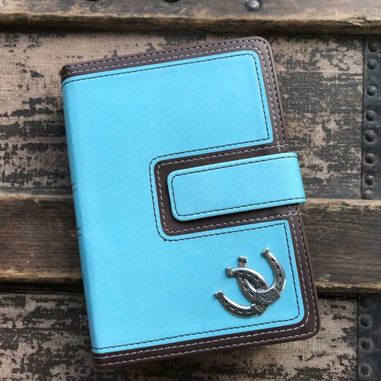 HCSB Large Print Compact Bible in Brown and Blue