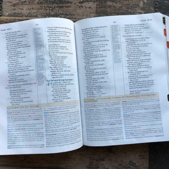 Psalm 46:10 HCSB Study Bible